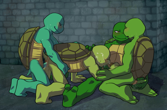 of turtle donatello ninja picture Shadow the hedgehog arms crossed